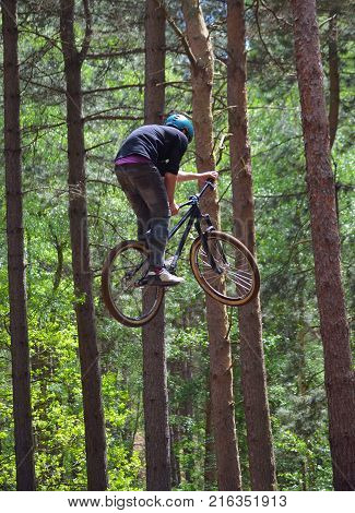 HAYNES, BEDFORDSHIRE, ENGLAND - MAY 14, 2017:  Freestyle  Stunt Cyclist in mid air very high with trees in background.
