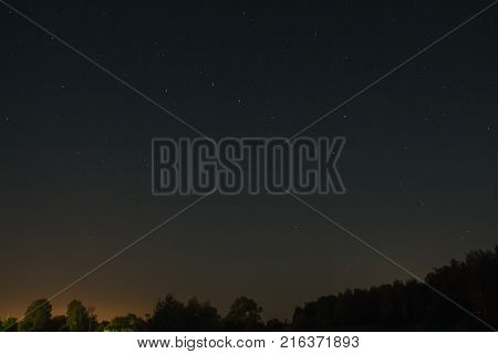 Summer night sky over the forest with stars and the constellation Ursa Major