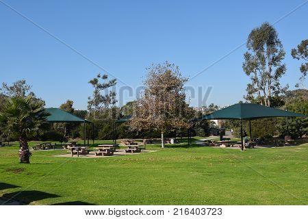 DANA POINT, CA - DECEMBER 1, 2017: Doheny State Beach Lawn and Picnic Area. The beach is a popular surf spot with Volleyball courts, picnic areas and campground.