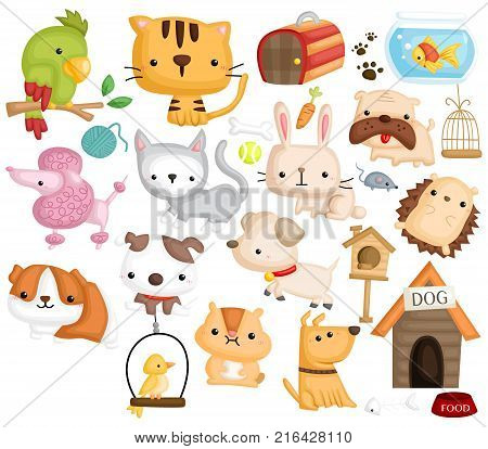 a vector set of many animal and pet