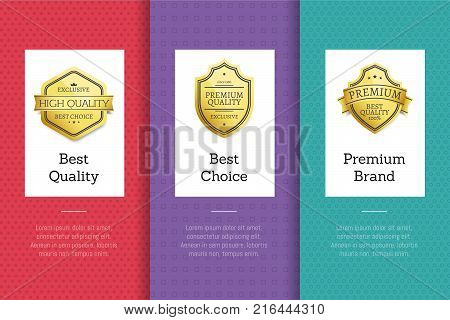 Best quality premium brand choice golden labels set of logos design on colorful posters with text vector illustrations collection on abstract backgrounds