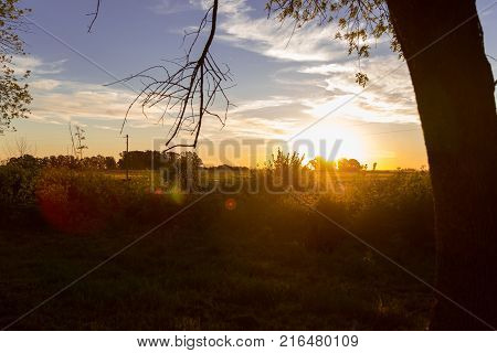 Countryside landscape. View of the sunset in the farm. The trees and vegetation at backlight.
