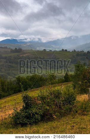 Sunrise In Snowy Carpathian Mountains
