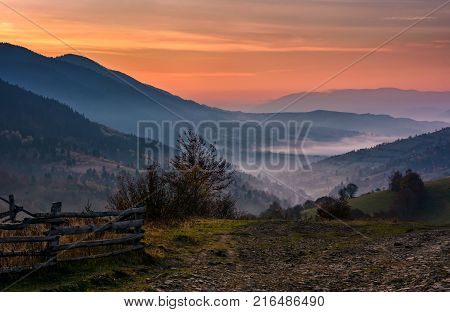 Green Meadows And Forest Of The Carpathians