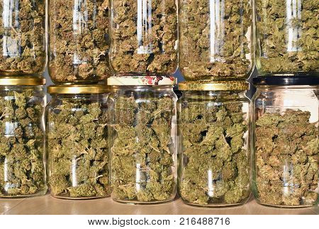 Dry and trimmed cannabis buds stored in a glas jars. Medical cannabis