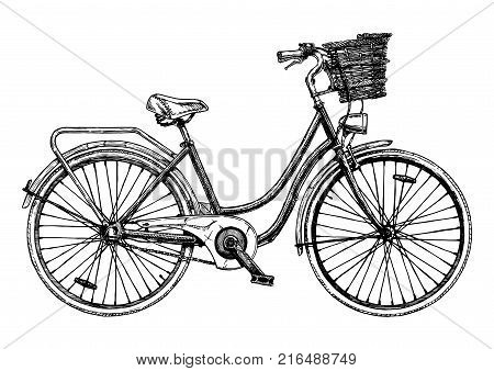 Illustration Of  Mountain Bicycle