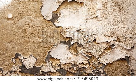 Old wall texture - Abstract Europe Map alike