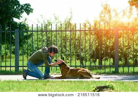 The woman is praising her dog. The dog is obedient and happy.
