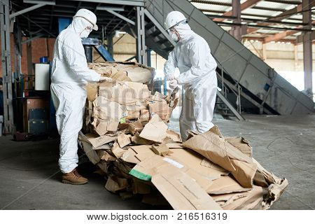 Portrait of two factory workers wearing biohazard suits sorting reusable cardboard on recycling plant, copy space