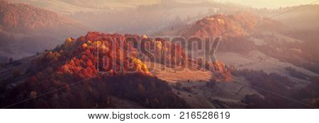 Mountain autumn panoramic landscape with colorful forest. Relict beech and hornbeam woodland. Panorama of sunrise in Carpathian mountain valley with wonderful gold light on a hills.