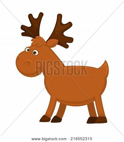 Funny little moose with big branchy horns, fluffy forelock, big slanting eyes, small tail and solid hooves isolated cartoon vector illustration on white background. Forest young cloven-hoofed animal.