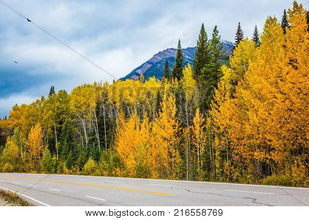 The grandiose nature of the Rockies of Canada. The magnificent Highway 93