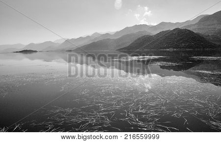 Reflections on the water surface with grass, lake Skadar in Montenegro