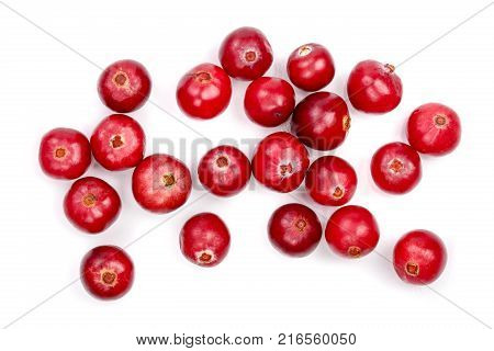 Cranberry isolated on white background closeup top view.