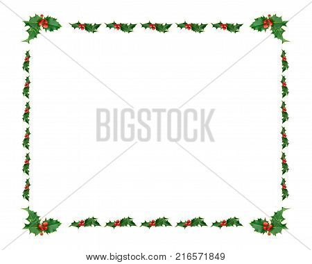 Festive Holly  Leaf frame on white background
