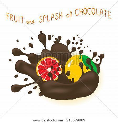 Vector illustration logo for citrus fruit red grapefruit splash of drop chocolate. Grapefruit pattern consisting of splashes drip flow liquid Chocolate. Eat citrus fruits grapefruits in chocolates.