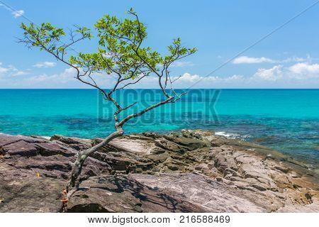 Beautiful rocky coast on Koh Kood island in Thailand