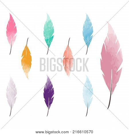 Watercolor feathers set on white background. Feather logo, feather sign.