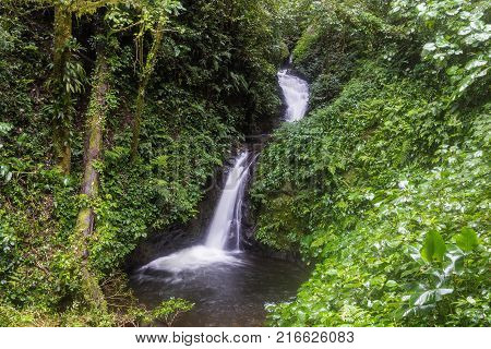 waterfall in the nebular forest of Monte Verde Costa Rica