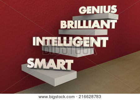 Levels Intelligence Smart Brilliant Genius Steps Stairs 3d Illustration