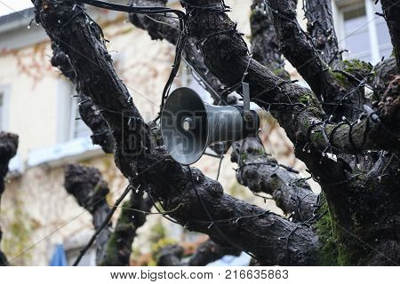 Street loudspeaker on the tree / Street loudspeaker on the tree