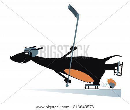 Dog an ice hockey player isolated. Cartoon dachshund in helmet plays ice hockey