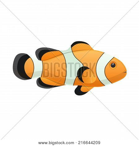 Colorful sea and aquarium fish, decorative clown fish swimming on the blue deep sea bottom. Eating, delicious menu, market to around the world. Vector flat illustration.
