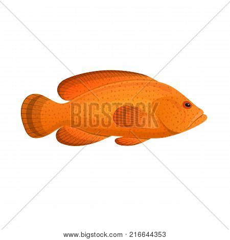 Fish grouper spotted. Colorful sea fish, swimming on the blue deep sea bottom. Ingredient for cooking tasty food. Eating, delicious menu, market fish to around the world. Vector flat illustration.
