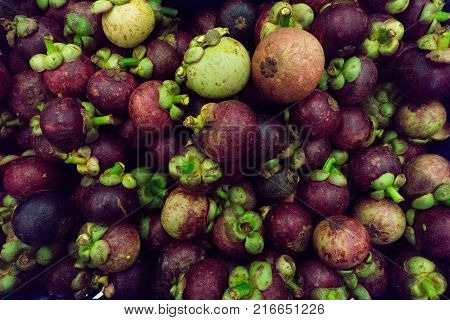 Mangosteen. A pile of mangosteen selling in a market mangosteen background.