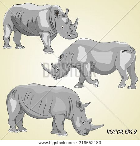 A set of realistic rhinos isolated on a light beige background. Each object is located on a separate layer