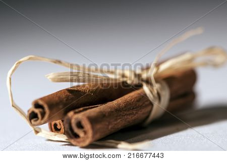 Close-up of cinnamon sticks bonded with ribbon knots. Shallow depth of field.