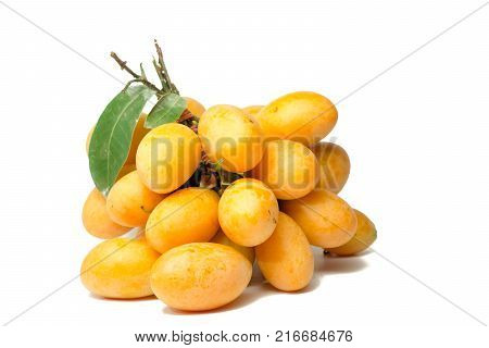 Marian Plum is a bunch on a white background sweet marian plum thai fruit isolated on white background ( Marian Plum and Plum Mango )