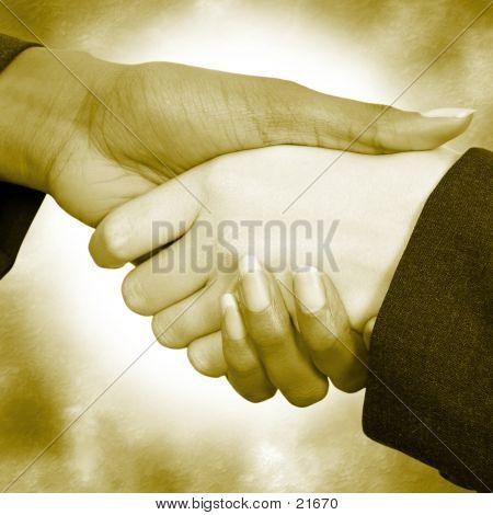 Female Handshake 04