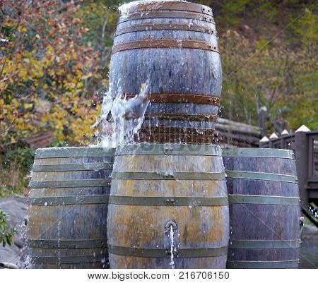 Four rustic old barrel with water leaking out