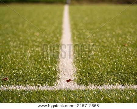 White Line Marks Painted On Artificial Green Turf Background. Playfield Border.