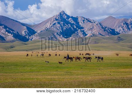 Man Guiding Horses, Song Kul Lake