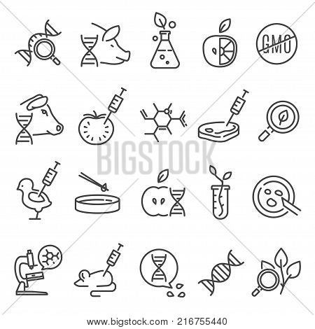 Gmo icon set. Genetically modified organism altered by means of genetic engineering, organisms created in a laboratory. Vector line art illustration isolated on white background