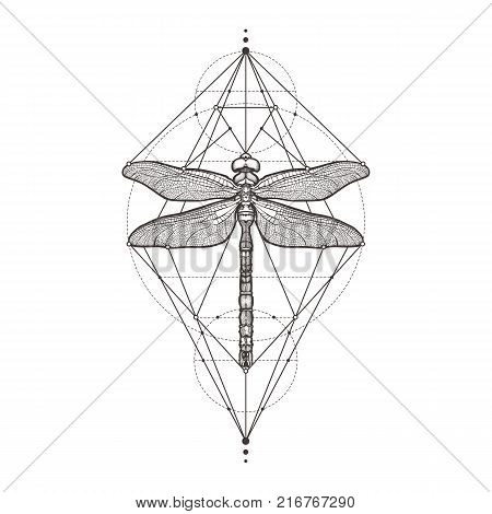 Black dragonfly Aeschna Viridls, isolated on white background. Tattoo sketch. Mystical symbols and insects. Alchemy, religion, occultism, spirituality, coloring books. Hand-drawn vector illustration
