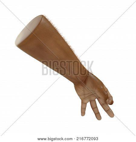 Man Hands ok sign Swarthy Skin on white background. 3D illustration
