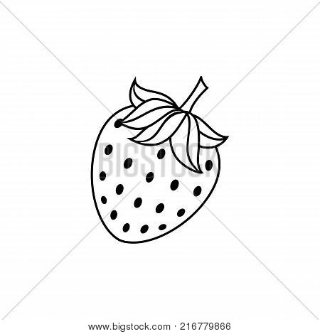 vector flat sketch style black and white contour strawberry. Isolated illustration on a white background. Healthy vegetarian eating, dieting and lifestyle design object.