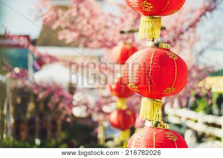 Red chinese lantern for chinese new year celebration.