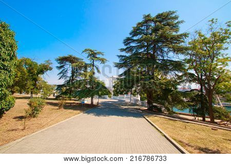 Russia Crimea Sevastopol July 24 2016: road in the park to the beautiful white columns of the rotunda.