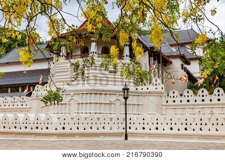 Temple of the Sacred Tooth Relic and the yellow flowers in Kandy Sri Lanka