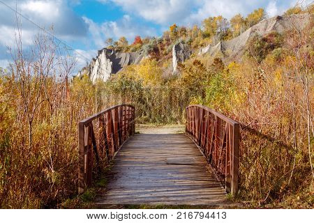 Beautiful autumn fall view of Canadian Ontario park Scarborough Bluffs with cliffs on background. Small bridge leading to pathway in bushes grass. Sunny day with blue sky and clouds outside