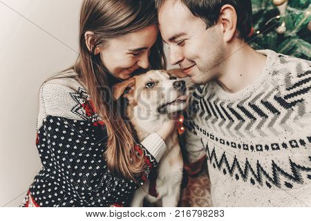 Stylish Hipster Couple In Sweaters Playing With Dog And Smiling At Christmas Tree In Festive Room. A