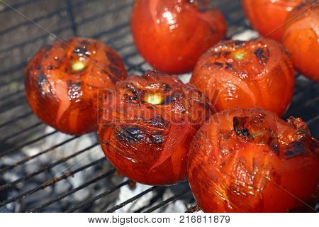 Red tomatoes with grillmarks cooked on char barbecue grill with smoke close up high angle view
