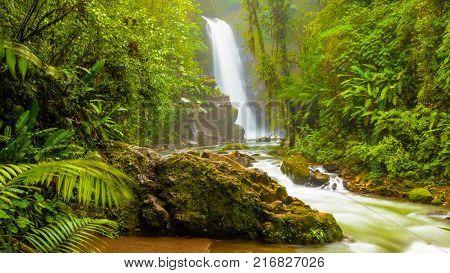 Waterfall in the wild  jungle of Costa Rica