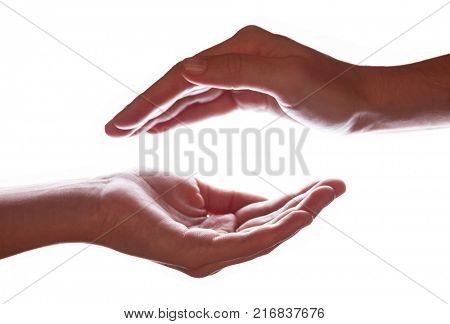 Woman or female hands cupped in a protection, protection, safety or safe concept symbol. Backlight or backlighting illumination for silhouettes designs. White background with copy space.
