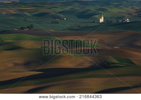 View of Palouse Washington from Steptoe Butte