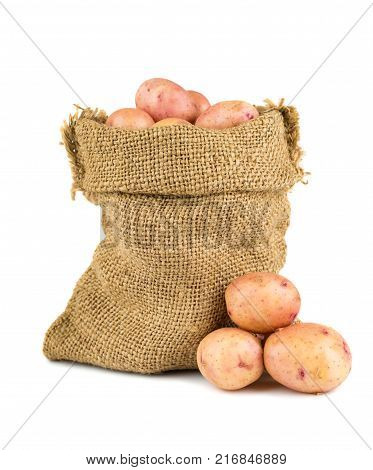 Ripe potatoes in burlap sack on white background